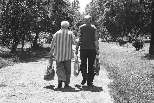 propiedades del reishi en el envejecimiento