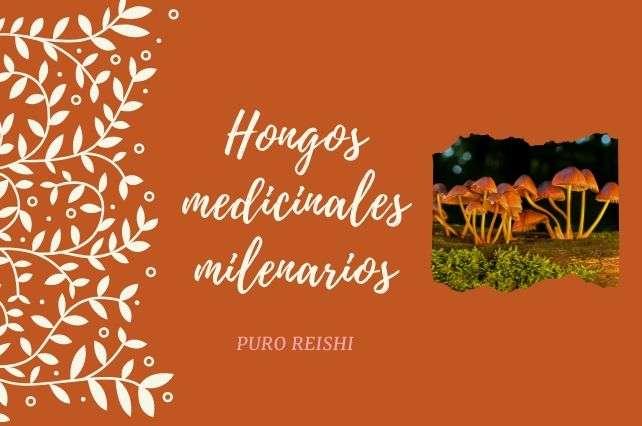 Hongos medicinales a lo largo de la historia