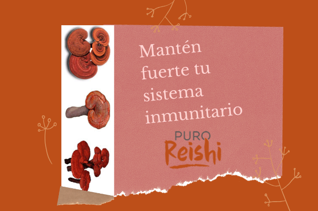 Mantén fuerte tu sistema inmunitario