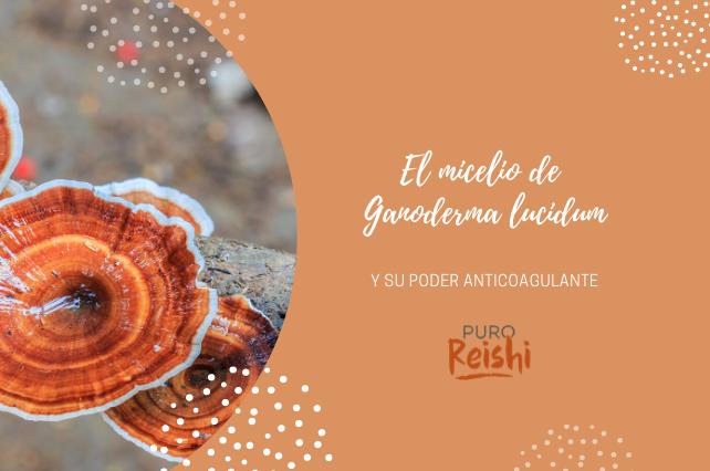 El poder anticoagulante del micelio de Ganoderma lucidum