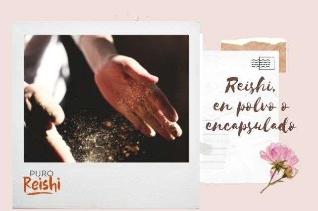 Reishi: ¿Encapsulado o en polvo?